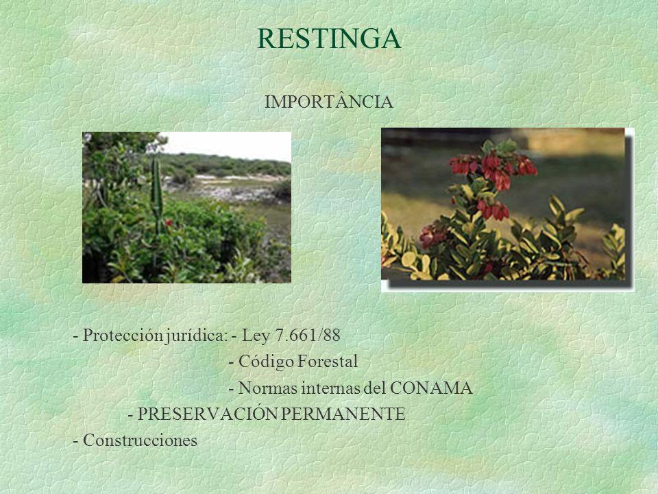 RESTINGA IMPORTÂNCIA - Protección jurídica: - Ley 7.661/88