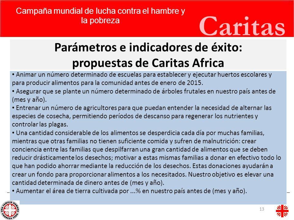 Parámetros e indicadores de éxito: propuestas de Caritas Africa