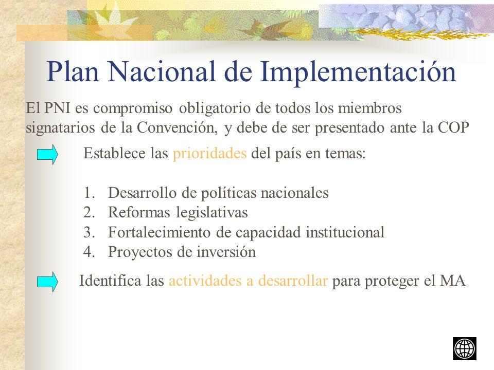 Plan Nacional de Implementación