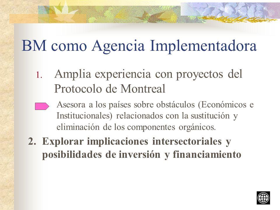 BM como Agencia Implementadora