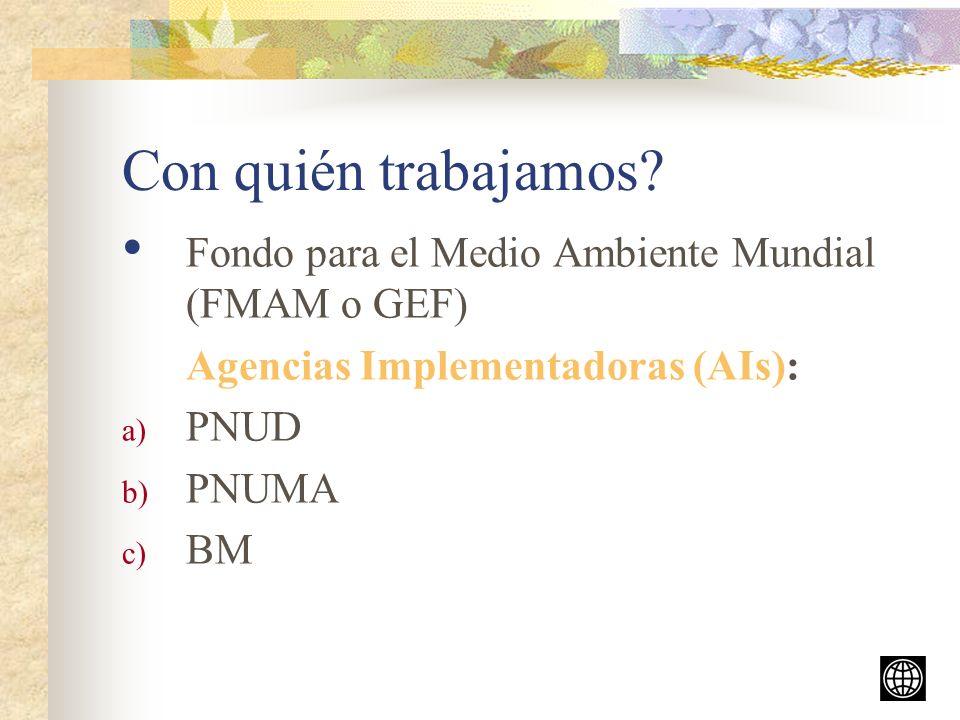 Con quién trabajamos Fondo para el Medio Ambiente Mundial (FMAM o GEF) Agencias Implementadoras (AIs):