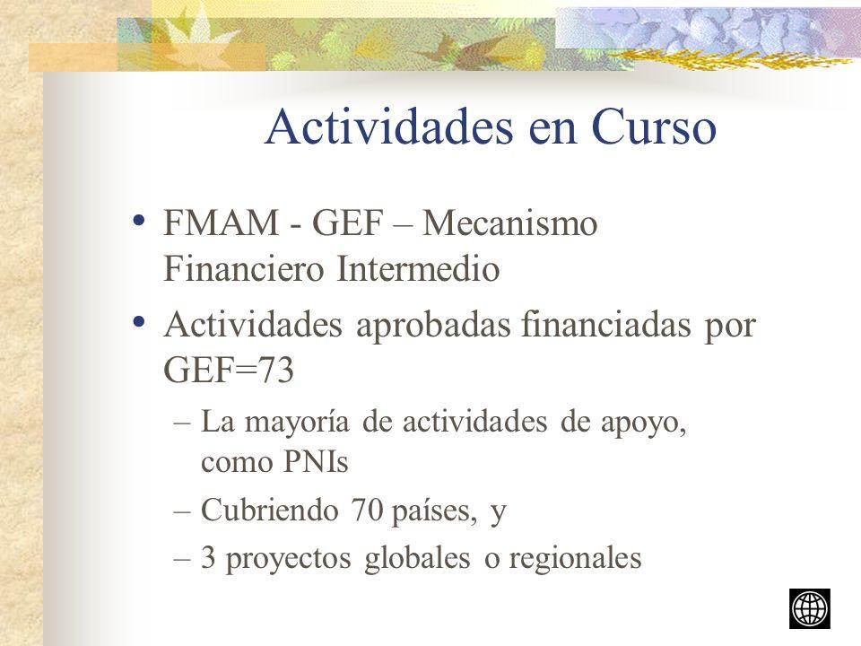 Actividades en Curso FMAM - GEF – Mecanismo Financiero Intermedio