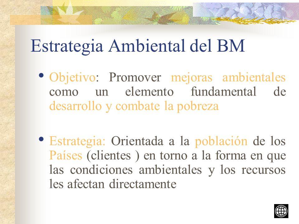 Estrategia Ambiental del BM