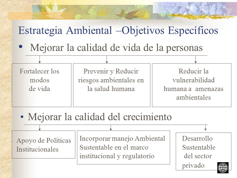 Estrategia Ambiental –Objetivos Específicos