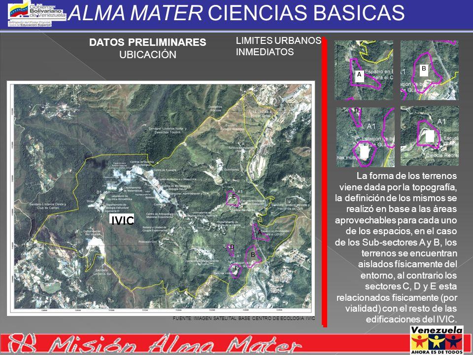 ALMA MATER CIENCIAS BASICAS ALMA MATER CIENCIAS BASICAS