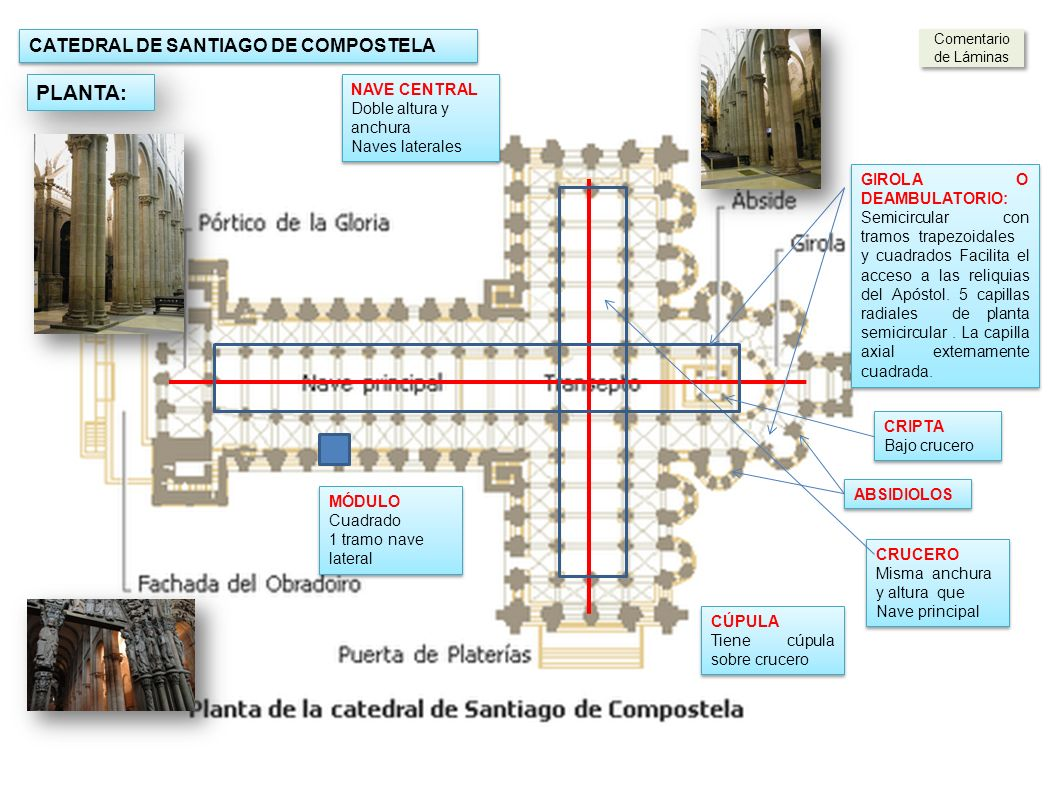 PLANTA: CATEDRAL DE SANTIAGO DE COMPOSTELA NAVE CENTRAL