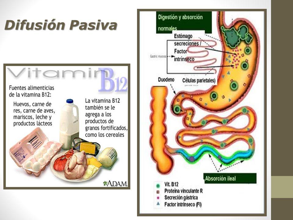Difusión Pasiva