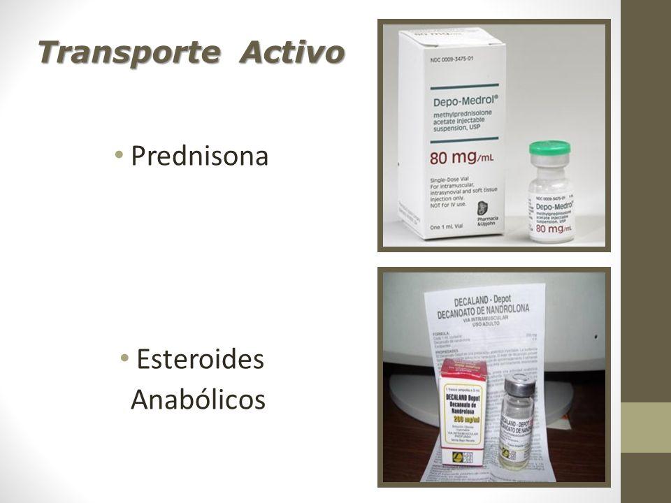 Transporte Activo Prednisona Esteroides Anabólicos