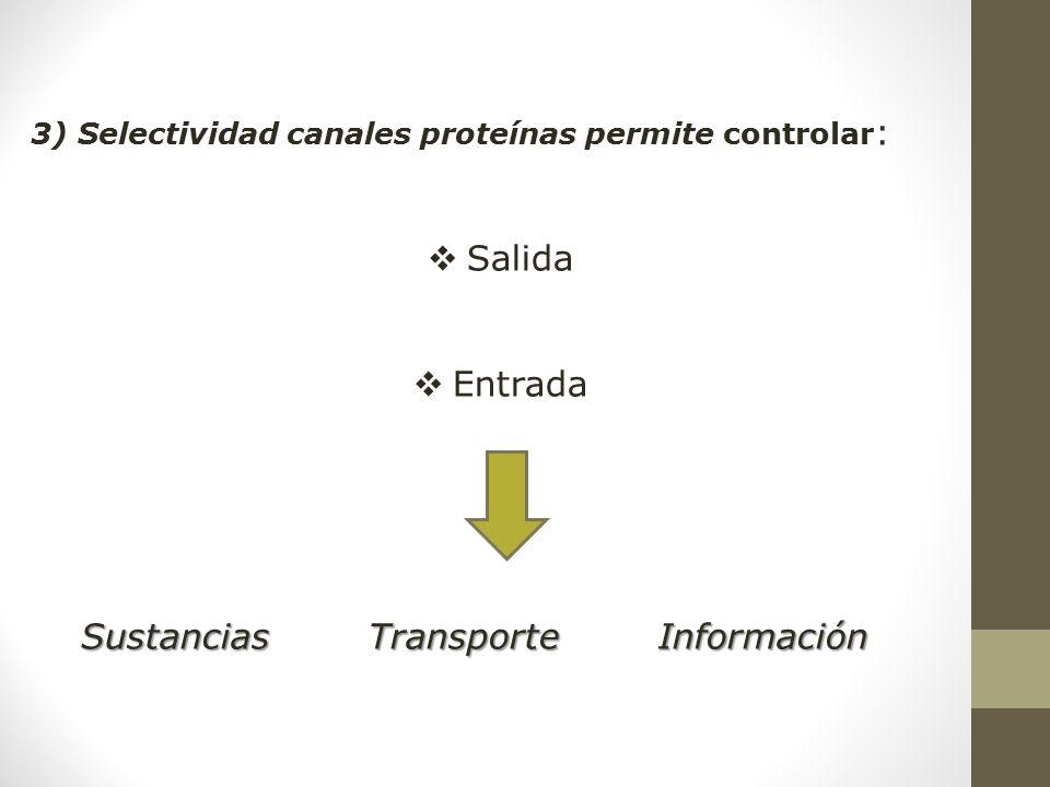 Sustancias Transporte Información