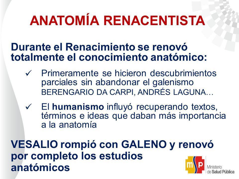 Encantador Los Recientes Avances En La Anatomía Motivo - Anatomía de ...