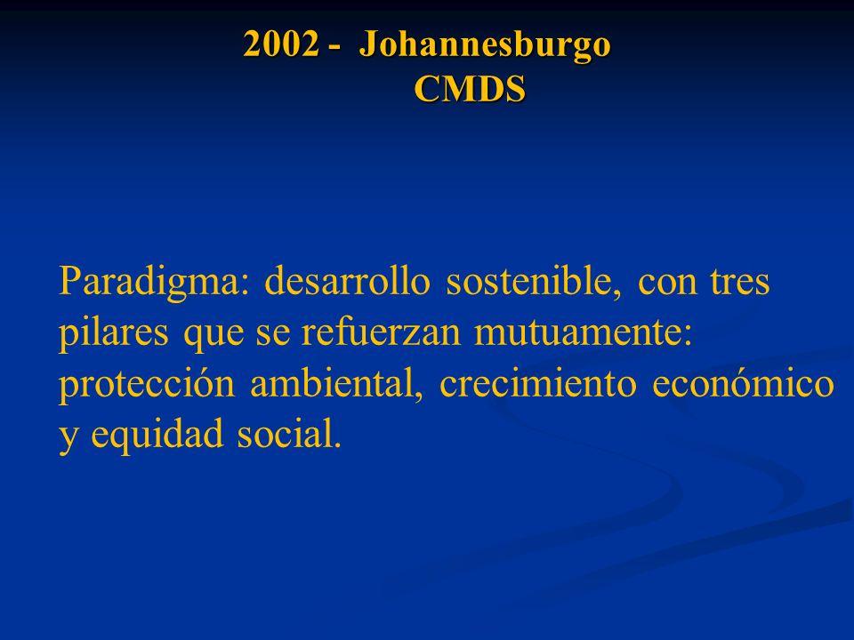 2002 - Johannesburgo CMDS