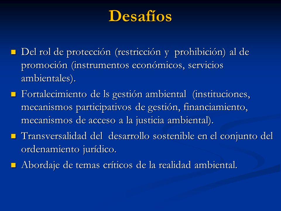 Desafíos Del rol de protección (restricción y prohibición) al de promoción (instrumentos económicos, servicios ambientales).
