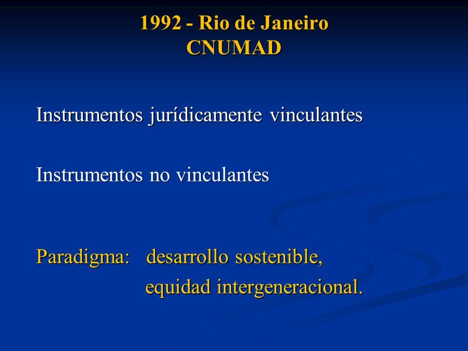 1992 - Rio de Janeiro CNUMAD Instrumentos jurídicamente vinculantes. Instrumentos no vinculantes. Paradigma: desarrollo sostenible,
