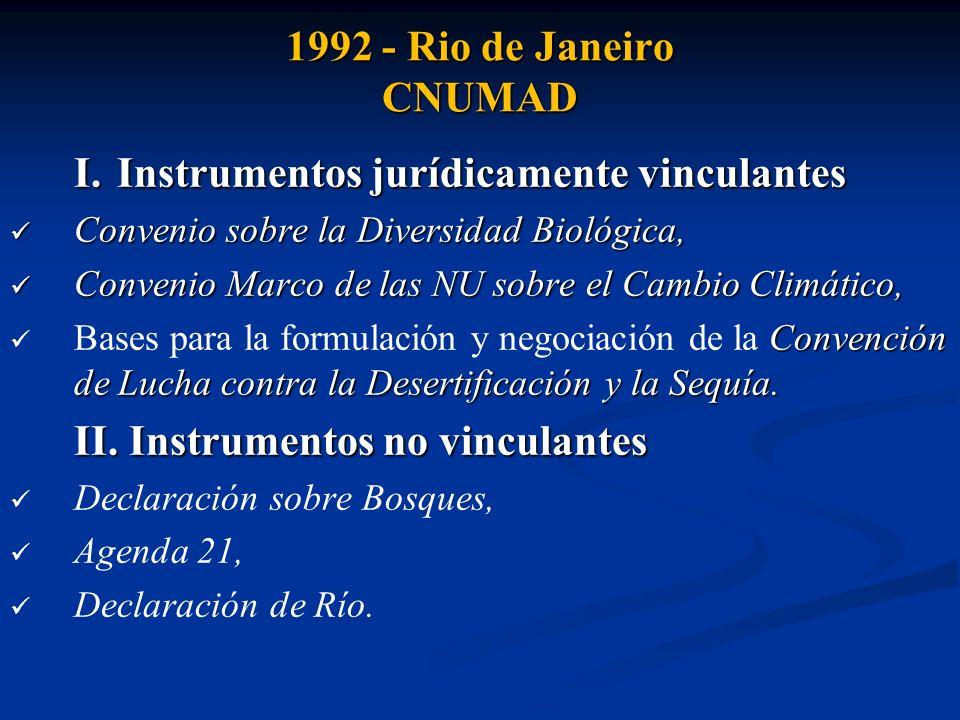 I. Instrumentos jurídicamente vinculantes