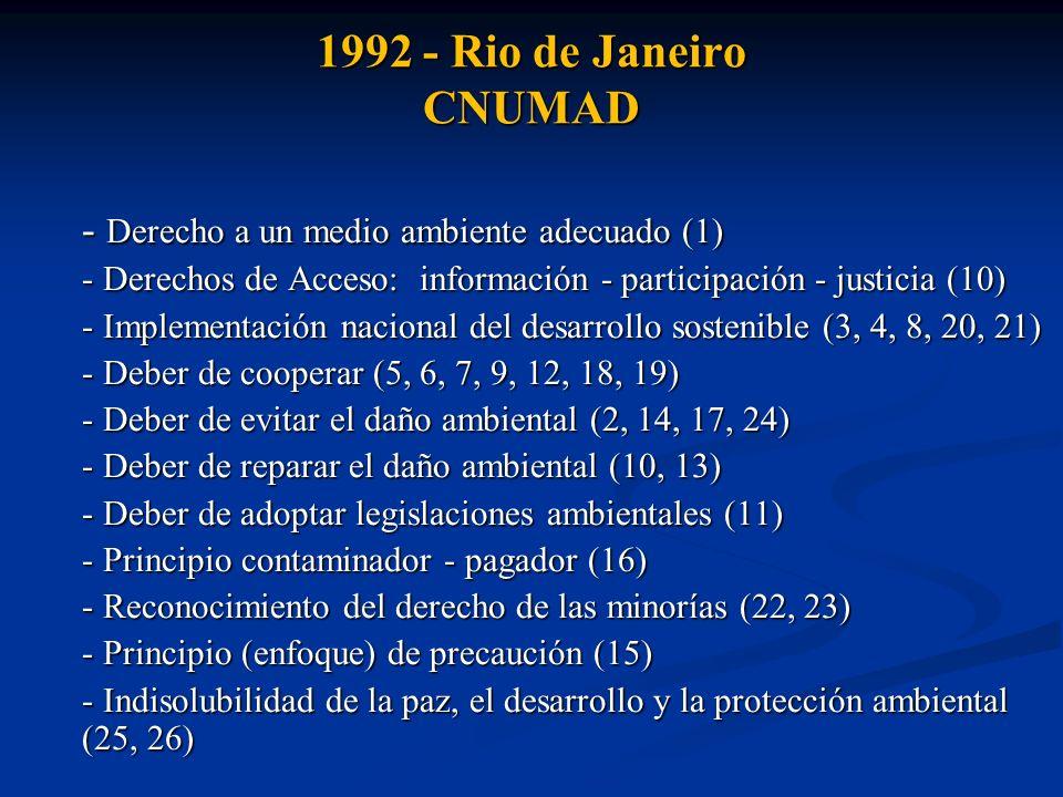 1992 - Rio de Janeiro CNUMAD - Derecho a un medio ambiente adecuado (1) - Derechos de Acceso: información - participación - justicia (10)