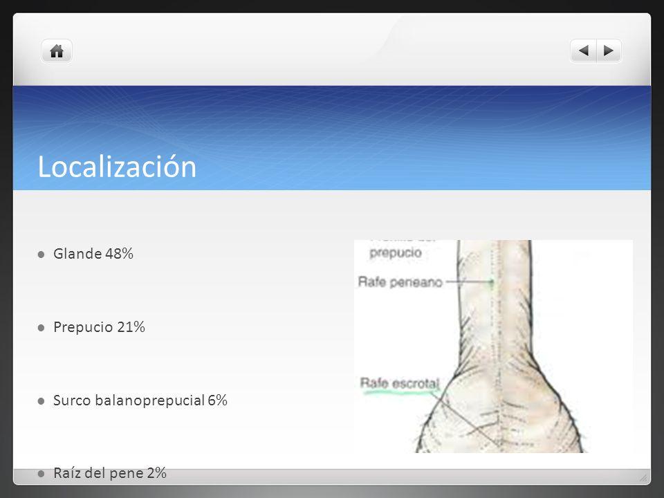 Localización Glande 48% Prepucio 21% Surco balanoprepucial 6%