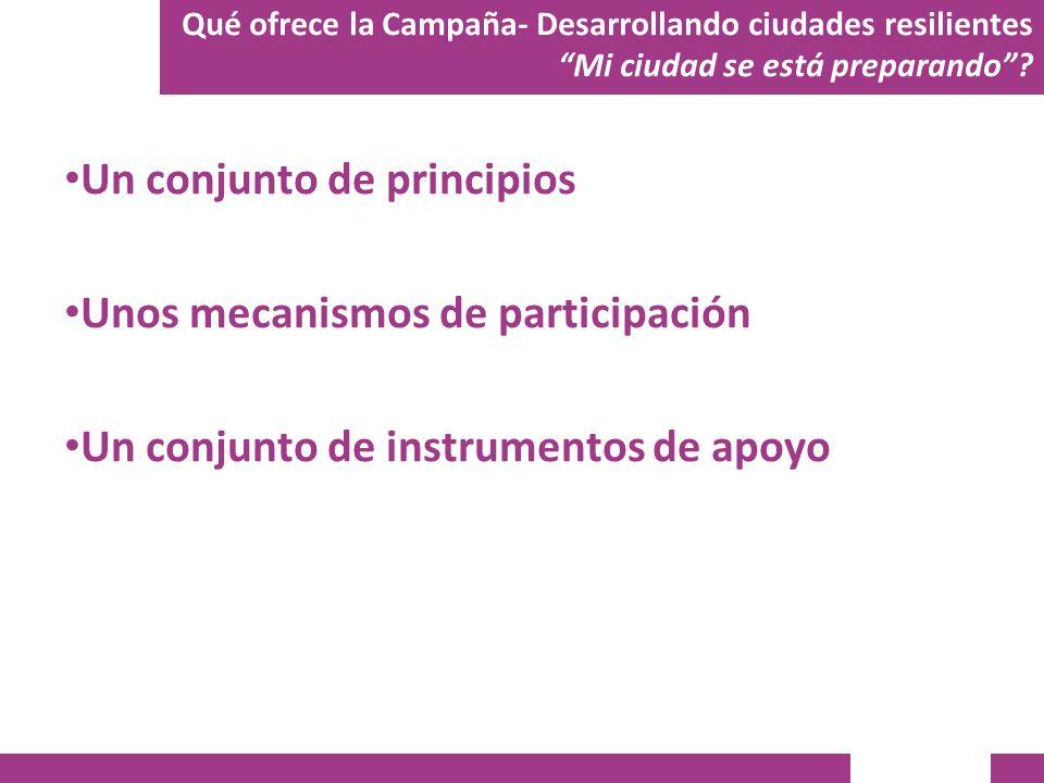 Un conjunto de principios Unos mecanismos de participación