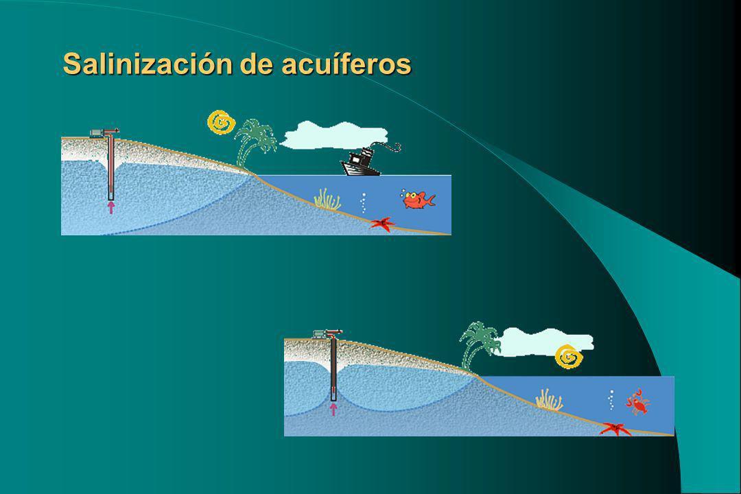 Salinización de acuíferos