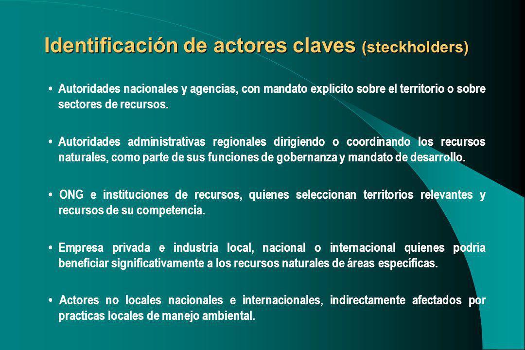 Identificación de actores claves (steckholders)