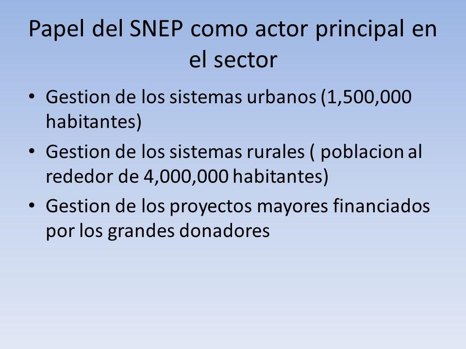 Papel del SNEP como actor principal en el sector