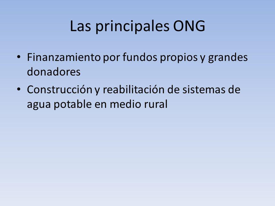 Las principales ONG Finanzamiento por fundos propios y grandes donadores.