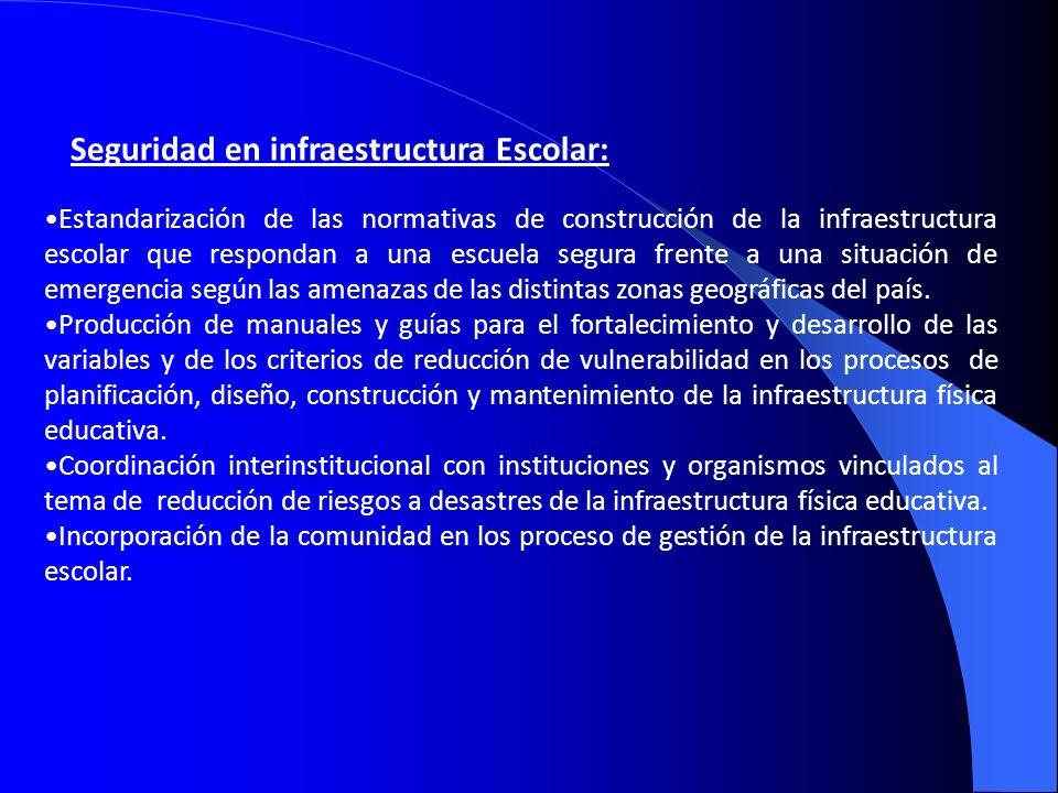 Seguridad en infraestructura Escolar: