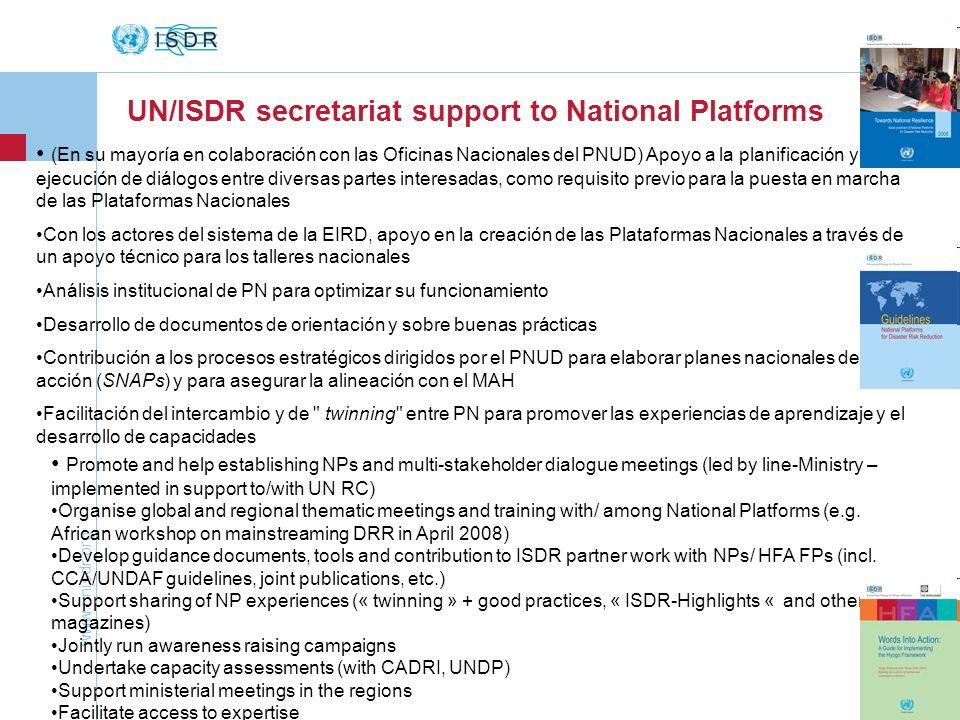 UN/ISDR secretariat support to National Platforms