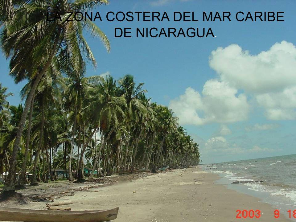 LA ZONA COSTERA DEL MAR CARIBE DE NICARAGUA.