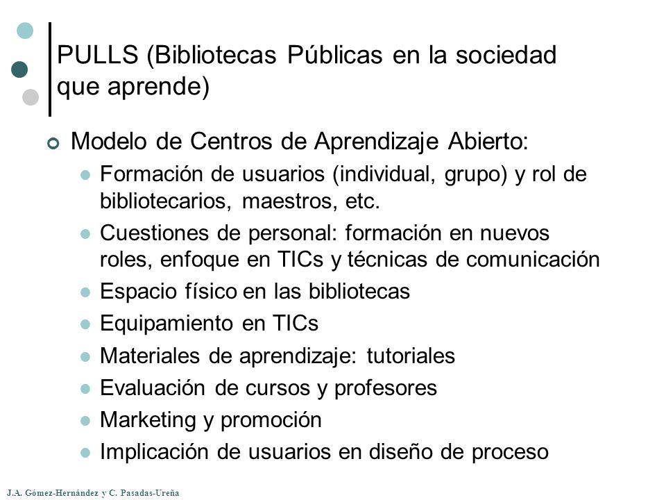 PULLS (Bibliotecas Públicas en la sociedad que aprende)
