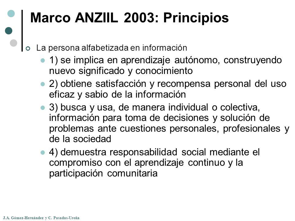 Marco ANZIIL 2003: Principios