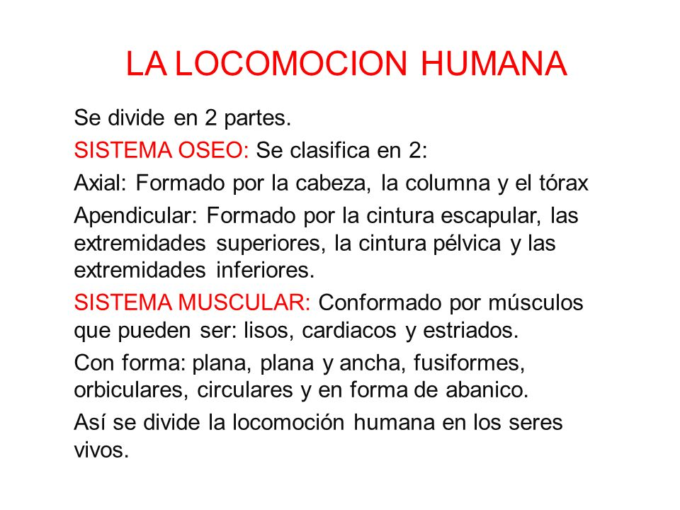 LA LOCOMOCION HUMANA Se divide en 2 partes. - ppt video online descargar