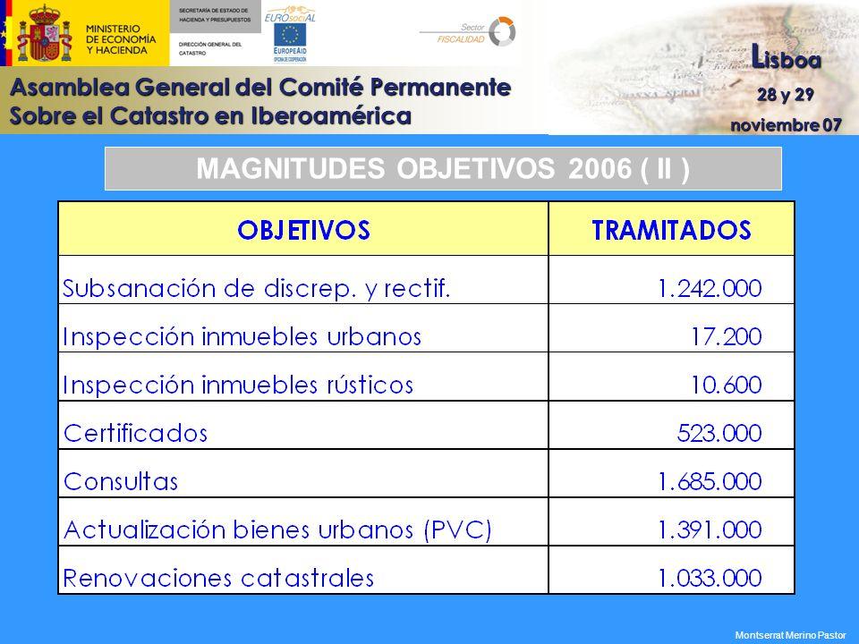 MAGNITUDES OBJETIVOS 2006 ( II )