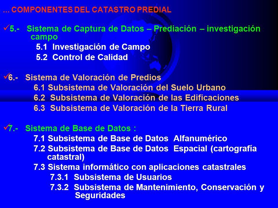 5.1 Investigación de Campo 5.2 Control de Calidad