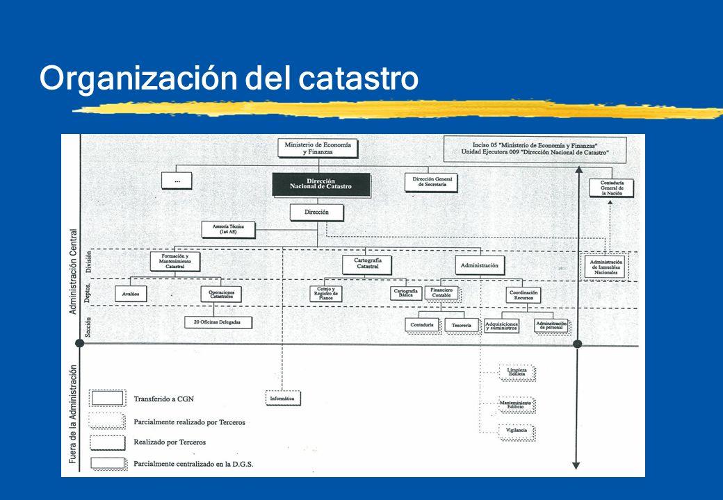 Organización del catastro