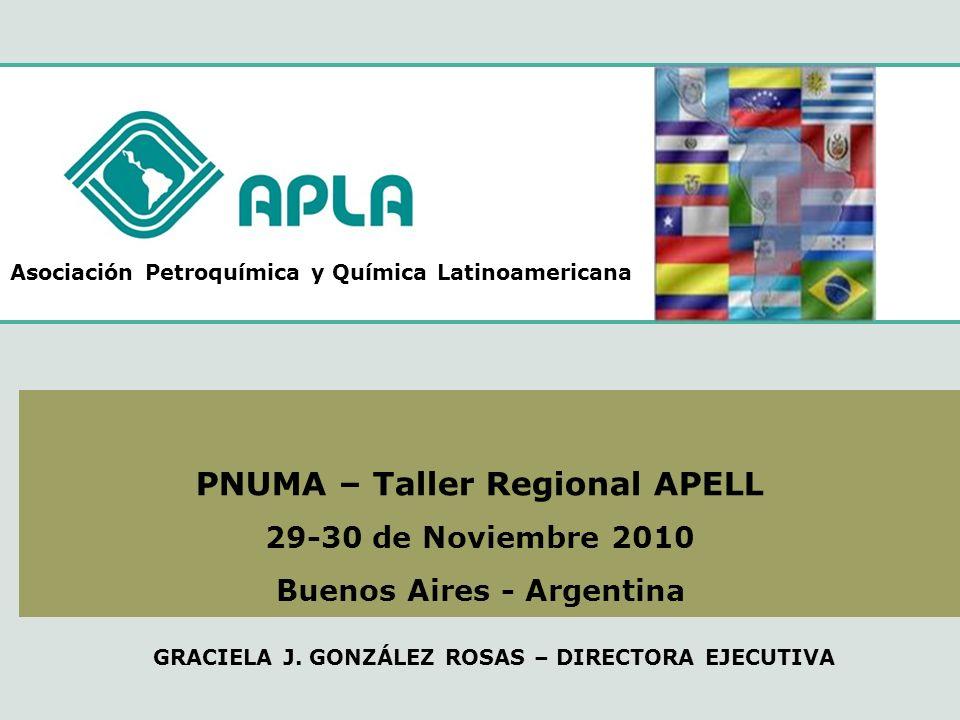 PNUMA – Taller Regional APELL