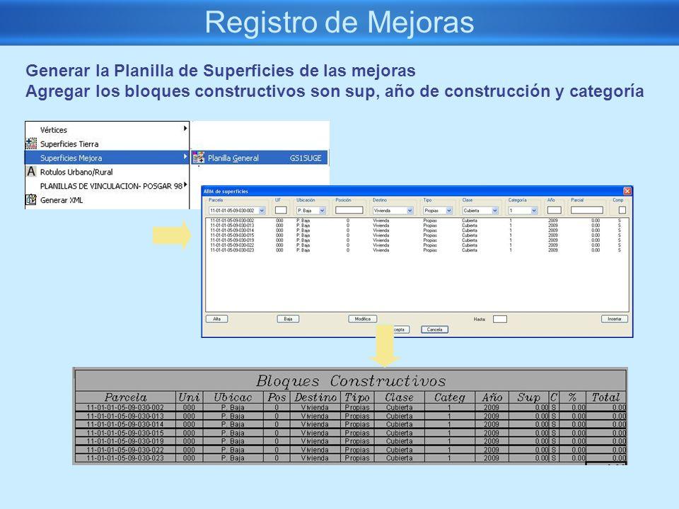 Registro de Mejoras Generar la Planilla de Superficies de las mejoras