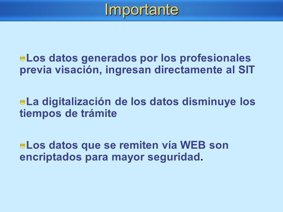 Importante Los datos generados por los profesionales previa visación, ingresan directamente al SIT.