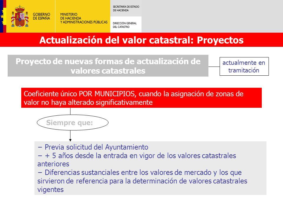 Actualización del valor catastral: Proyectos