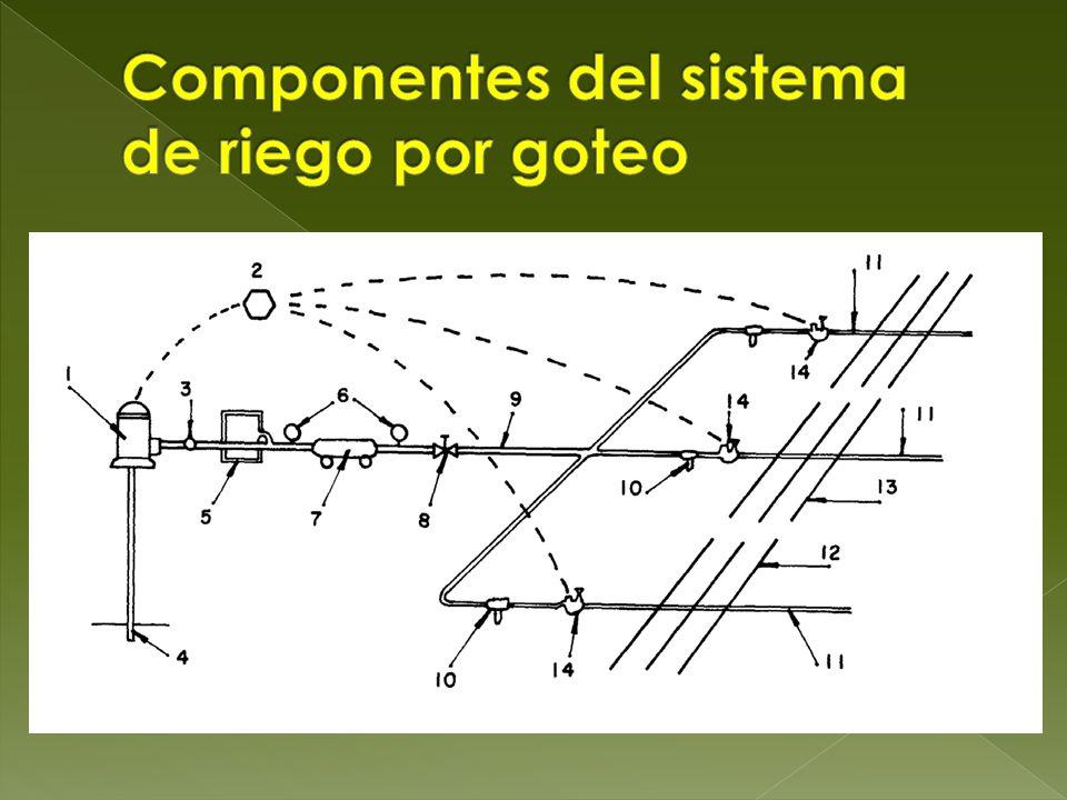 Dise o y operaci n del riego por goteo en chile ppt - Sistema de riego por goteo automatizado ...