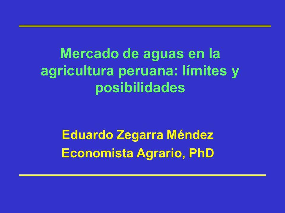 Mercado de aguas en la agricultura peruana: límites y posibilidades