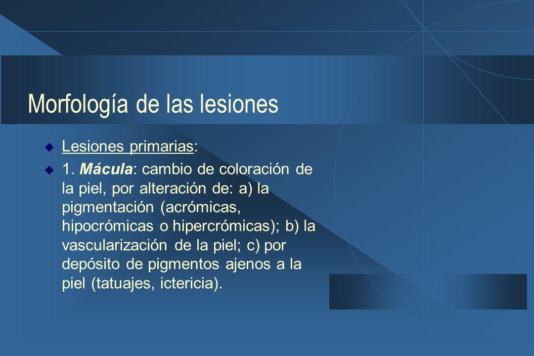 Morfología de las lesiones