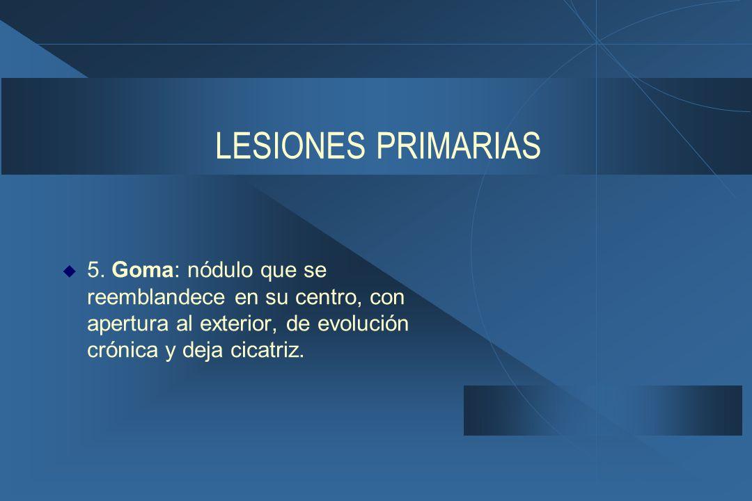 LESIONES PRIMARIAS 5.