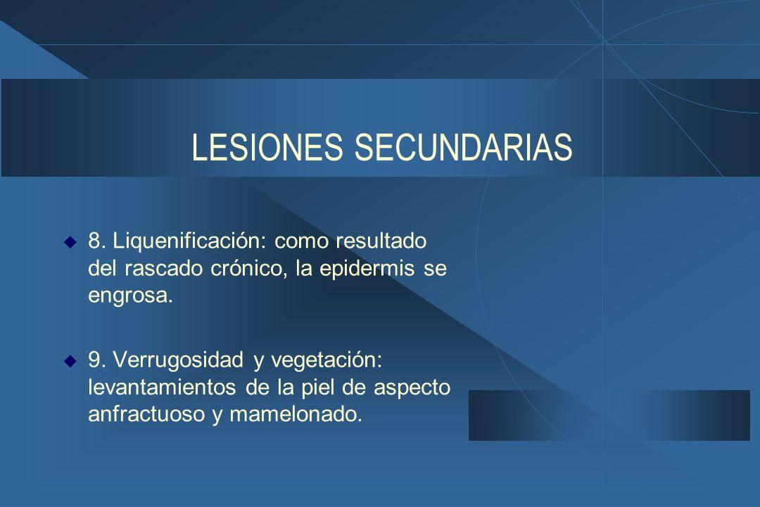 LESIONES SECUNDARIAS 8. Liquenificación: como resultado del rascado crónico, la epidermis se engrosa.