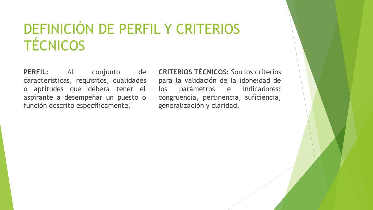 DEFINICIÓN DE PERFIL Y CRITERIOS TÉCNICOS