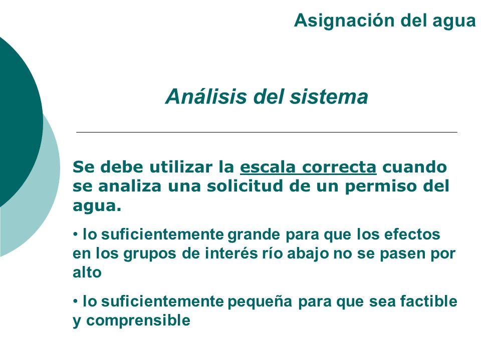 Análisis del sistema Asignación del agua