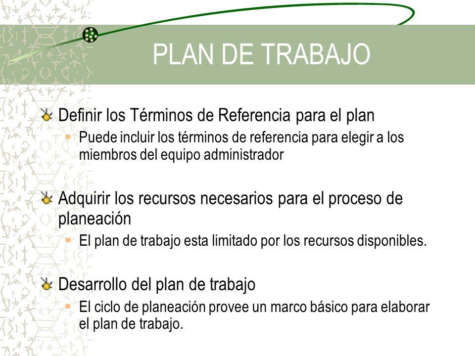 PLAN DE TRABAJO Definir los Términos de Referencia para el plan