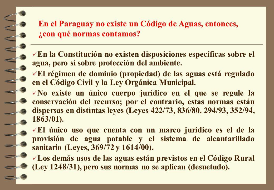 En el Paraguay no existe un Código de Aguas, entonces, ¿con qué normas contamos
