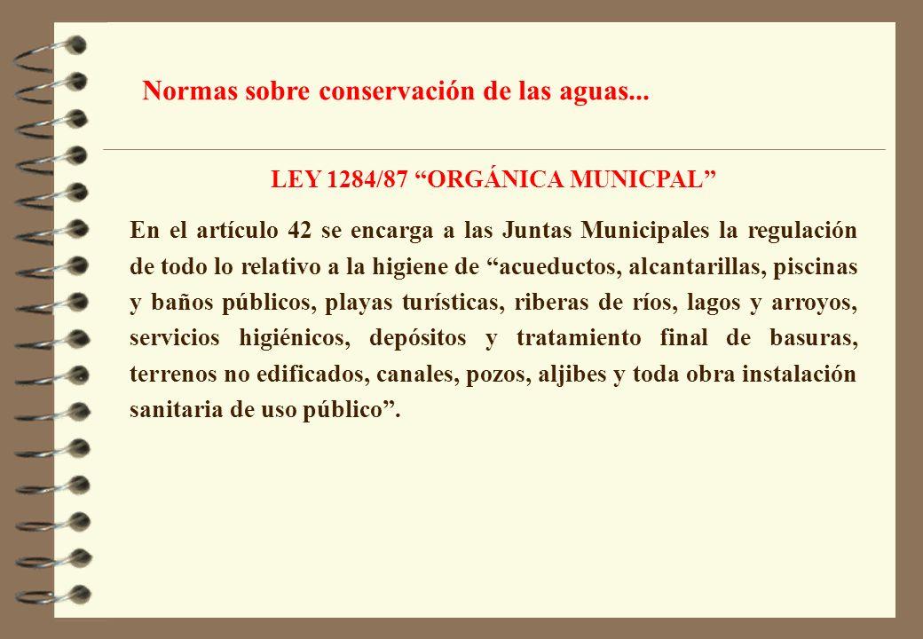LEY 1284/87 ORGÁNICA MUNICPAL