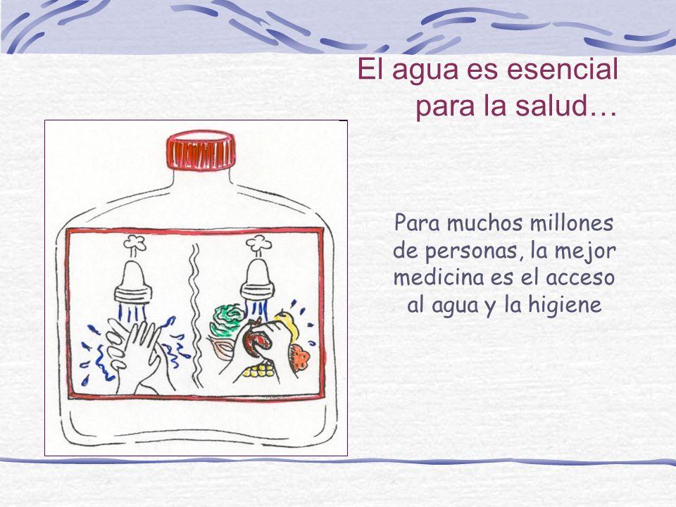 El agua es esencial para la salud…