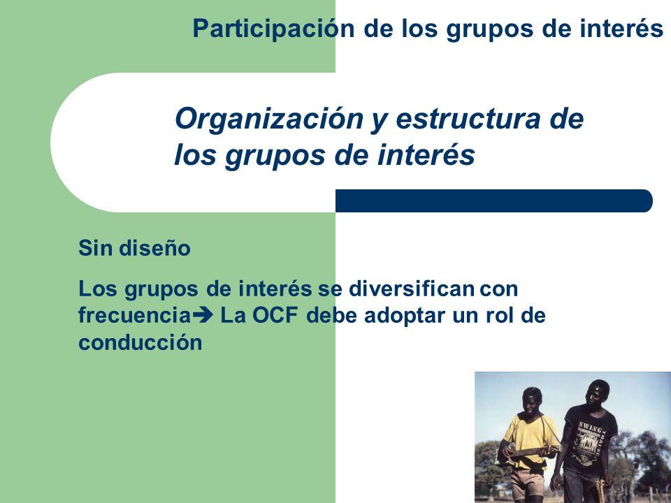 Organización y estructura de los grupos de interés